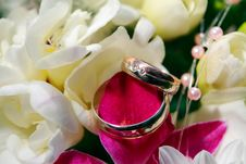 Free Wedding Rings With Flowers Stock Image - 14249411
