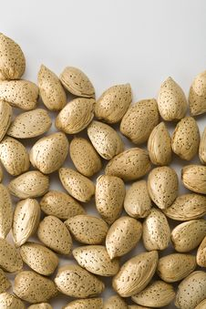 Free Shelled Almonds Royalty Free Stock Image - 14249646
