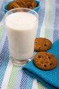 Free Ryazhenka With Oatmeal Cookies Royalty Free Stock Photos - 14256268