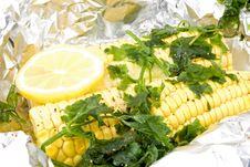 Free Steamed Corn Stock Photo - 14250730
