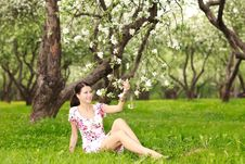 Free Woman With Flowering Tree Royalty Free Stock Photos - 14251178