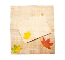 Free Old Dirty Paper With Autumn Leaves Stock Photo - 14251820