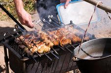 Free Shashlik Royalty Free Stock Photo - 14253415