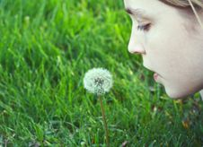 Free Girl About To Blow On A Dandelion Royalty Free Stock Image - 14254026