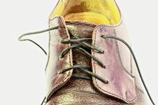 Free Mens Shoe Royalty Free Stock Photos - 14254028
