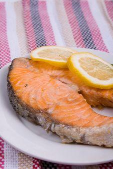 Free Grilled Salmon Stock Photos - 14256103