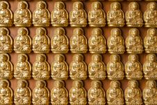 Free Ten Thousand Buddha On Chinese Temple Wall Royalty Free Stock Photography - 14256357