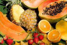 Free Fruits Stock Photos - 14256373