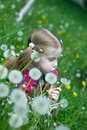 Free Little Girl With Dandelions Stock Photography - 14264652