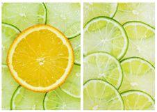 Citrus Background Stock Image