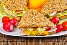 Tasty Triangle Fresh Sandwich Stock Photo