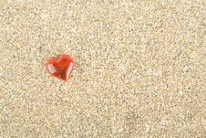 Free Love For The Sea Stock Images - 14263524