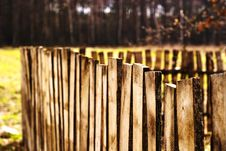 Free Fence Royalty Free Stock Photography - 14263587