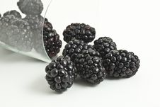 Free Blackberries And Glass Royalty Free Stock Photography - 14264227