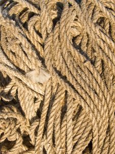 Free Rope On The Quayside Stock Photography - 14266792