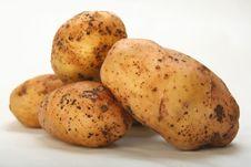 Crude Potatoes Royalty Free Stock Image