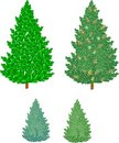 Free Pine Trees With Cones Royalty Free Stock Image - 14270946