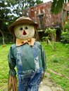Free Smiling Scarecrow Standing In Green Field Royalty Free Stock Images - 14279729
