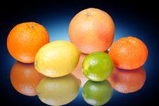 Free Citrus Royalty Free Stock Photo - 14270185