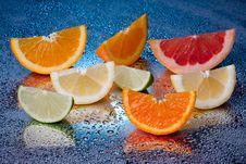 Free Citrus Royalty Free Stock Photos - 14270258