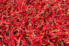 Free Pepper Stock Image - 14273981