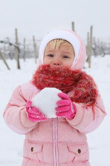 Free Snowball Stock Photography - 14279622