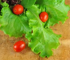 Lettuce And Tomatoes In Colander On Wood Royalty Free Stock Photo