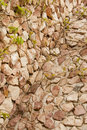 Free Red Brick Wall: Can Be Used As Background Stock Images - 14286234