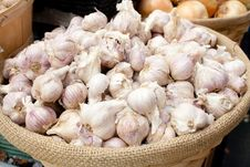 Free Garlic Royalty Free Stock Photography - 14280427
