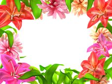 Free A Frame From Flowers Royalty Free Stock Images - 14281469