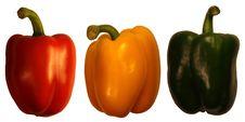 Free Pepper Fruit Stock Photo - 14282220