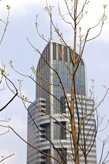 Free Shanghai Modern Buildings Royalty Free Stock Images - 14282689