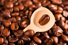 Free Coffee Beans In A Spoon Stock Photo - 14283160
