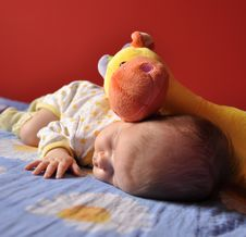 Free Baby Girl Sleeping With A Plush Toy Royalty Free Stock Photography - 14283197