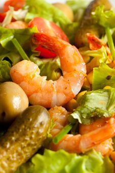 Free Shrimps Salad Royalty Free Stock Photography - 14285067