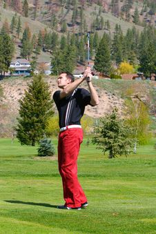 Free Young Golfer Stock Images - 14285184