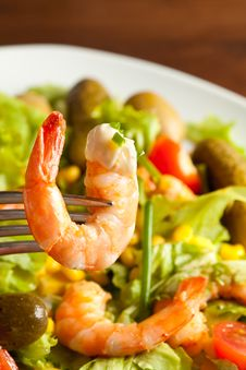 Free Shrimps Salad Royalty Free Stock Image - 14285316