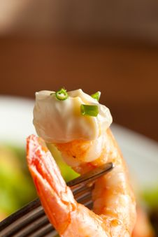 Free Shrimps Salad Royalty Free Stock Images - 14285369