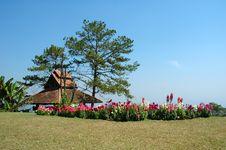 Free Huay Nam Dang National Park Stock Photo - 14285500