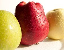 Red, Yellow And Green Apples Royalty Free Stock Image