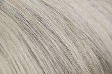 Grey, White And Dark Hairs Close-up Stock Photos