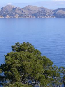 Free Coast Of Mallorca Royalty Free Stock Image - 14288326