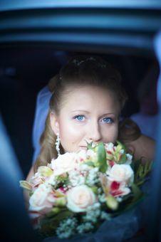 Free Wedding Wife Stock Photos - 14288453