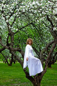 Free White Lady Royalty Free Stock Photo - 14288545