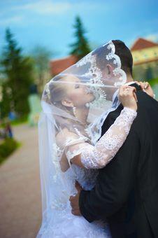 Wedding Wife And Husband Stock Photos