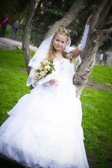 Free Wedding Wife Stock Photo - 14288710