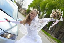 Free Wedding Wife Royalty Free Stock Photography - 14288777