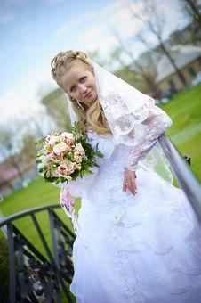 Free Wedding Wife Stock Photos - 14288963