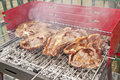 Free Grilled Meat Stock Photography - 14292692