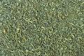 Free Green Tea Texture Royalty Free Stock Photos - 14298888